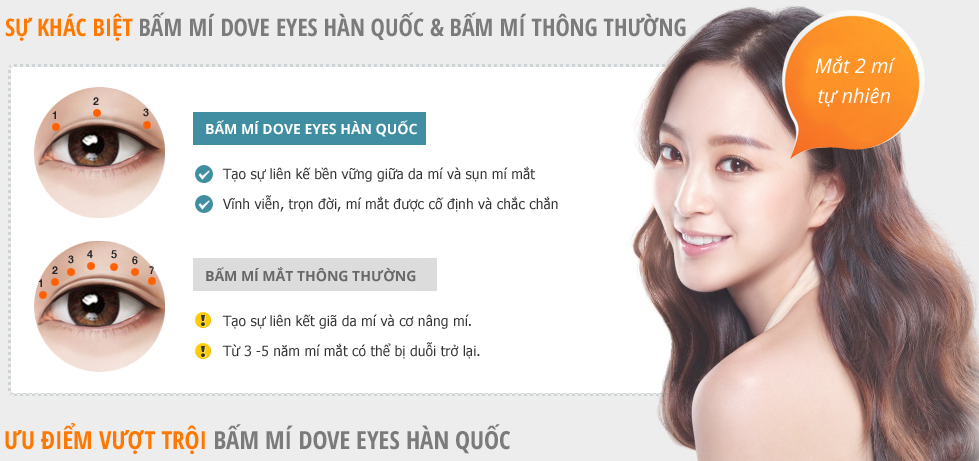 bam-mi-mat-dove-eye-1.png