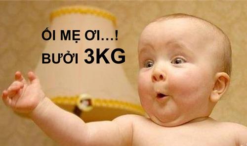 nguc-dep-3kg-4.jpg