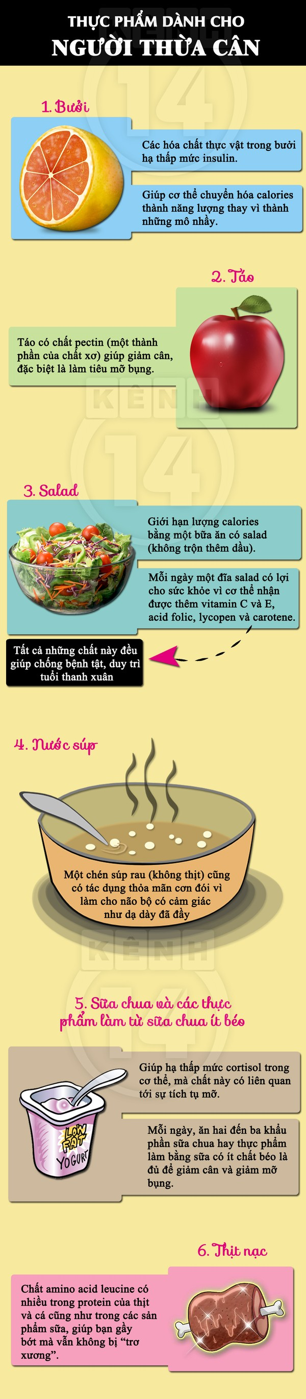 Top thực phẩm vô cùng có lợi cho người thừa cân
